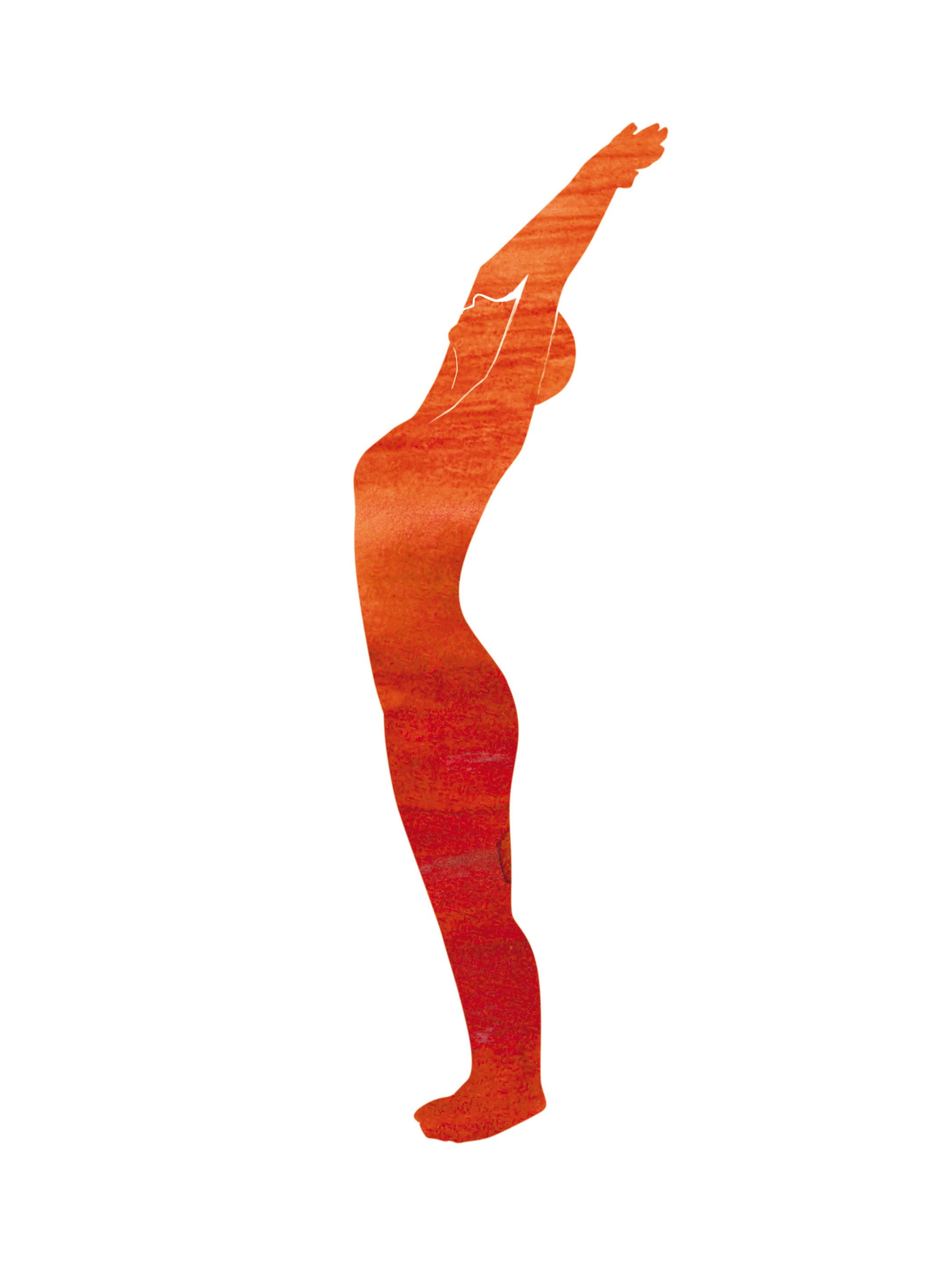 Die Wirbelsäule und ihre gesunde Spannkraft - Yoga Aktuell