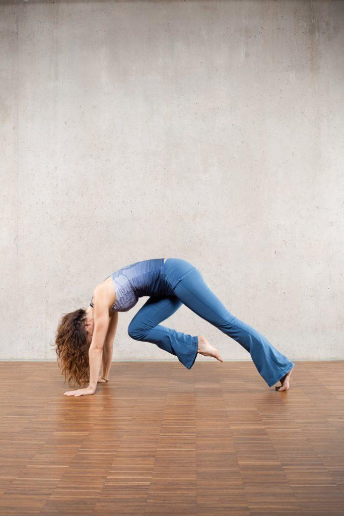 5. Chaturanga (Brett-Haltung) mit Knie zum Nabel (Bild 5)
