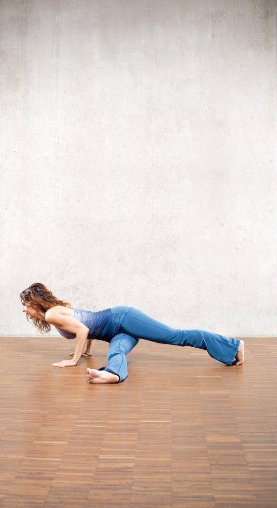 7. Chaturanga (Brett-Haltung) mit seitlichem Bein (Bild 7)