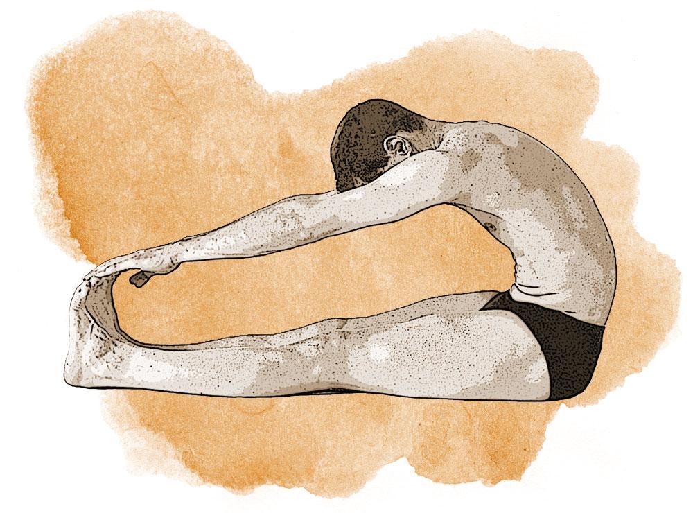 Die Anatomie von Vorwärtsbeugen - Yoga Aktuell