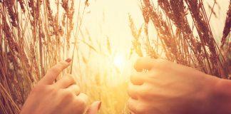 Frau blickt im Feld auf die Sonne