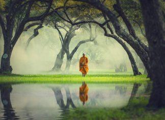 Buddhistischer Mönch in der Natur